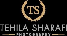 סטודיו TS logo